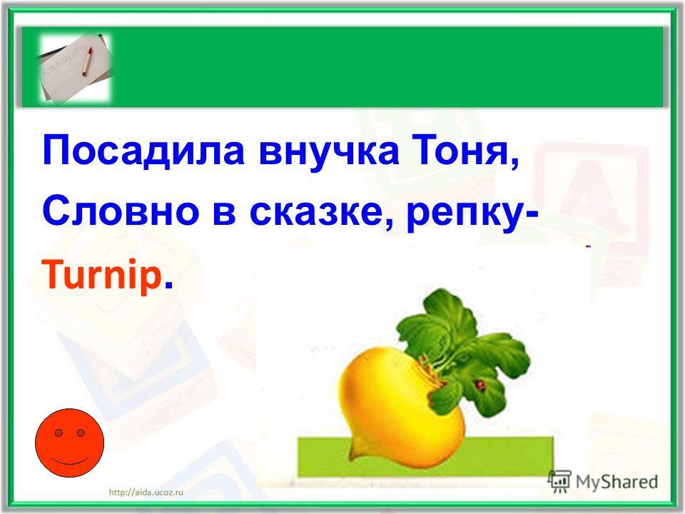 Посадила внучка Тоня, Словно в сказке, репку- Turnip.