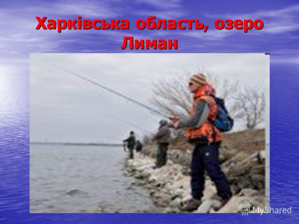 Харківська область, озеро Лиман