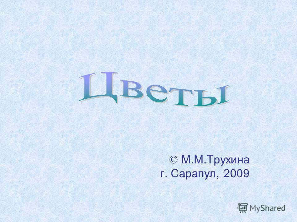 © М.М.Трухина г. Сарапул, 2009