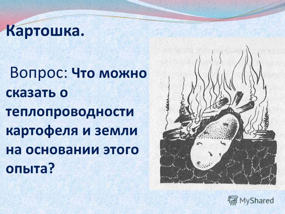 Картошка. Вопрос: Что можно сказать о теплопроводности картофеля и земли на основании этого опыта?