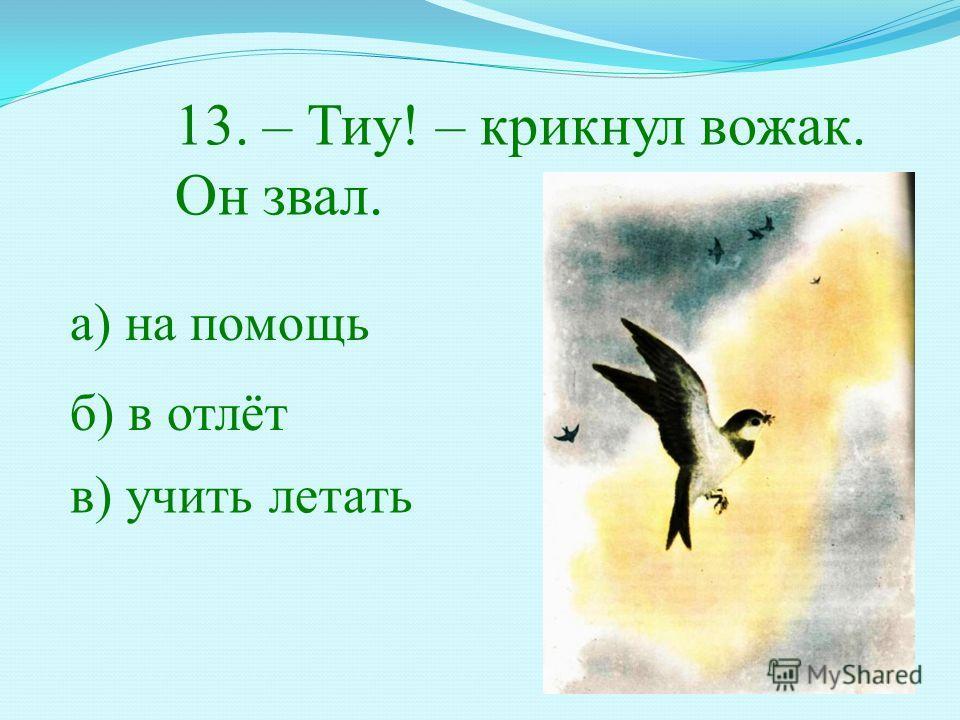 13. – Тиу! – крикнул вожак. Он звал. а) на помощь б) в отлёт в) учить летать