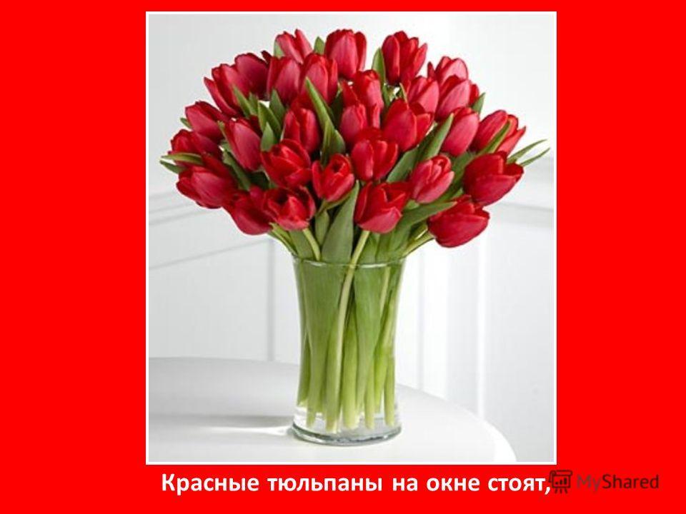 Красные тюльпаны на окне стоят,