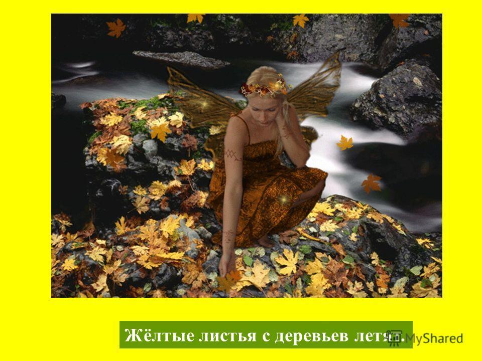Жёлтые листья с деревьев летят.