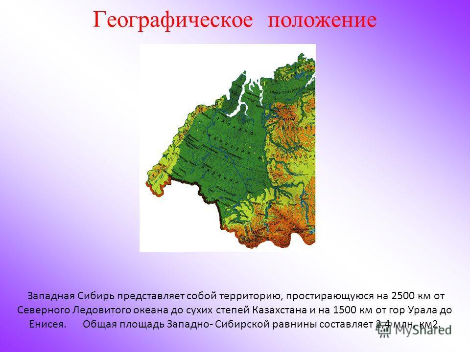 Западная Сибирь представляет собой территорию, простирающуюся на 2500 км от Северного Ледовитого океана до сухих степей Казахстана и на 1500 км от гор Урала до Енисея. Общая площадь Западно- Сибирской равнины составляет 2,4 млн. км2. Географическое п