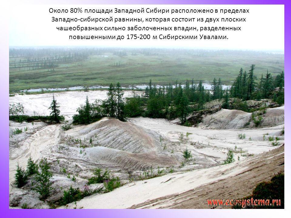 Около 80% площади Западной Сибири расположено в пределах Западно-сибирской равнины, которая состоит из двух плоских чашеобразных сильно заболоченных впадин, разделенных повышенными до 175-200 м Сибирскими Увалами.