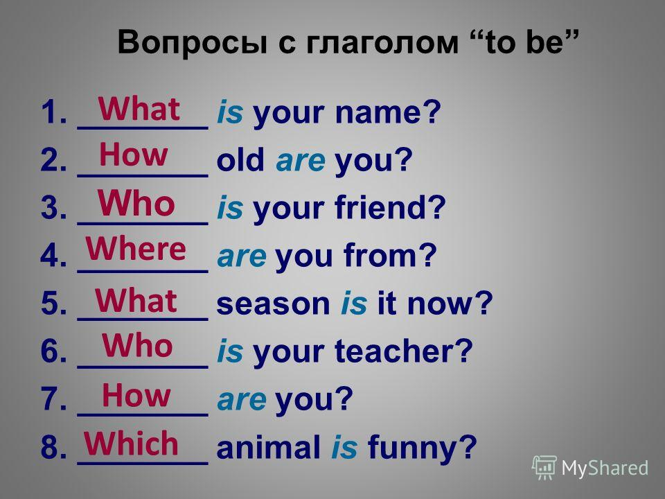 Вопросы с глаголом to be 1._______ is your name? 2._______ old are you? 3._______ is your friend? 4._______ are you from? 5._______ season is it now? 6._______ is your teacher? 7._______ are you? 8._______ animal is funny? What How Who Where What Who