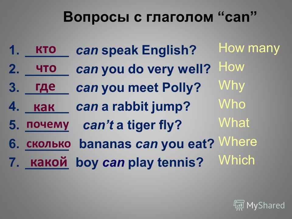 Вопросы с глаголом can 1.______ can speak English? 2.______ can you do very well? 3.______ can you meet Polly? 4.______ can a rabbit jump? 5.______ cant a tiger fly? 6.______ bananas can you eat? 7.______ boy can play tennis? How many How Why Who Wha