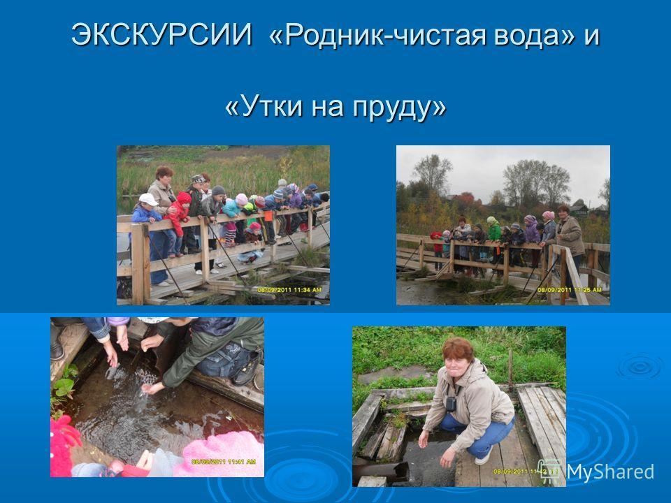 ЭКСКУРСИИ «Родник-чистая вода» и «Утки на пруду»