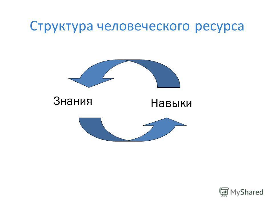 Структура человеческого ресурса Знания Навыки