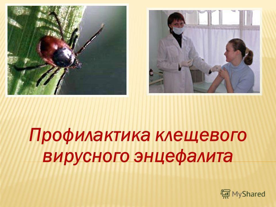 Клещевой энцефалит (КЭ)
