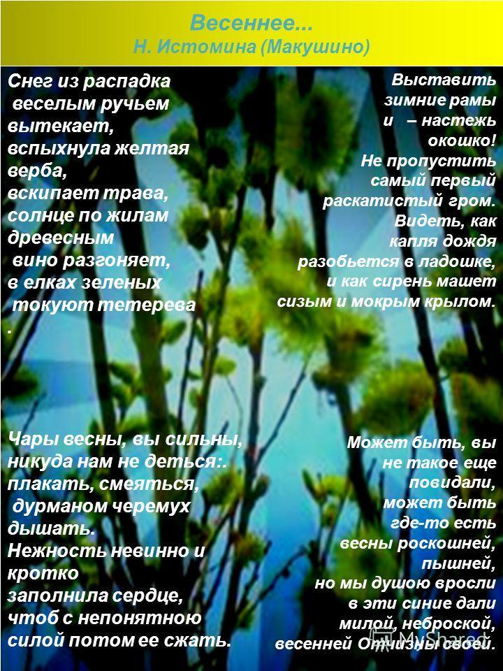 Весеннее... Н. Истомина (Макушино) Снег из распадка веселым ручьем вытекает, вспыхнула желтая верба, вскипает трава, солнце по жилам древесным вино разгоняет, в елках зеленых токуют тетерева. Чары весны, вы сильны, никуда нам не деться:. плакать, сме