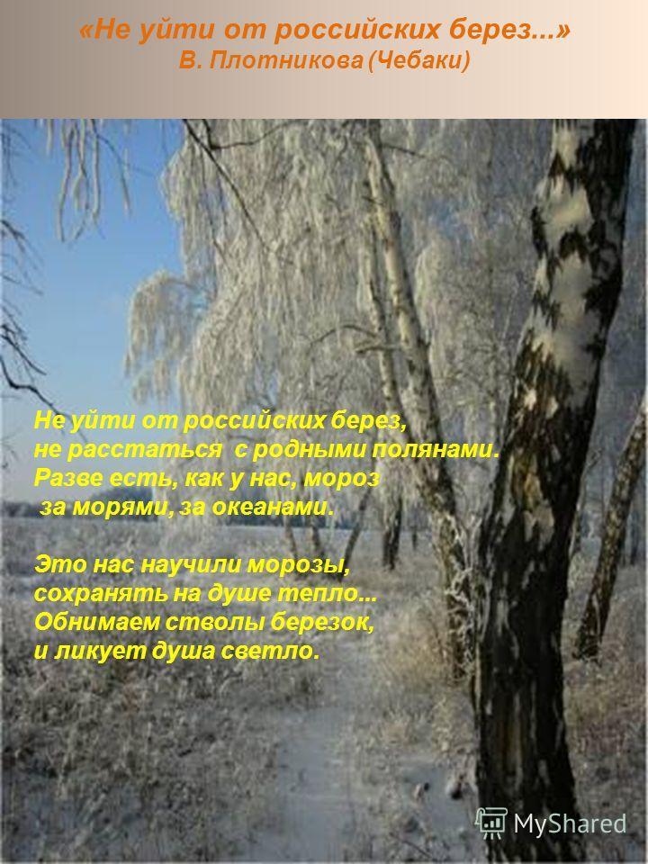 «Не уйти от российских берез...» В. Плотникова (Чебаки) Не уйти от российских берез, не расстаться с родными полянами. Разве есть, как у нас, мороз за морями, за океанами. Это нас научили морозы, сохранять на душе тепло... Обнимаем стволы березок, и
