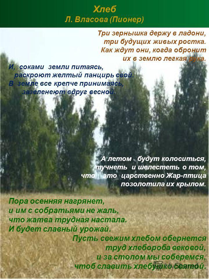 Хлеб Л. Власова (Пионер)
