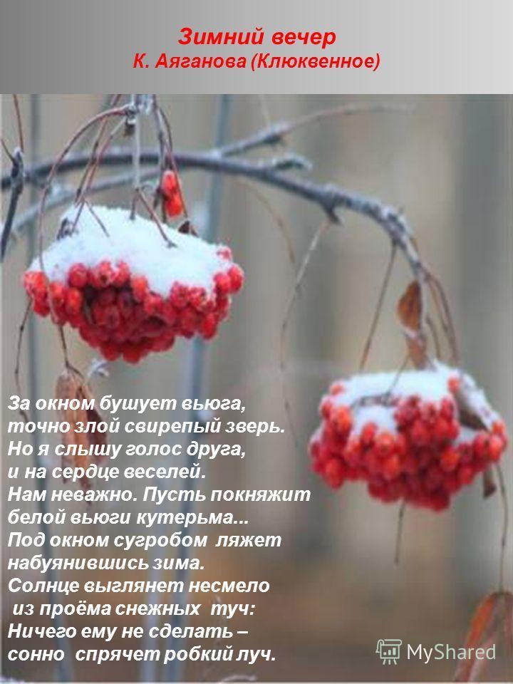 Зимний вечер К. Аяганова (Клюквенное)