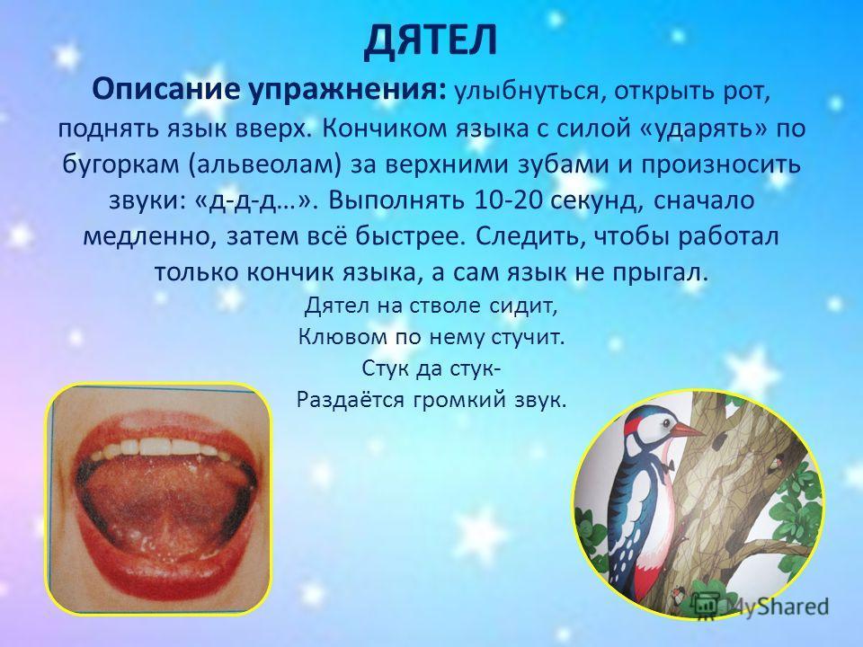 ДЯТЕЛ Описание упражнения: улыбнуться, открыть рот, поднять язык вверх. Кончиком языка с силой «ударять» по бугоркам (альвеолам) за верхними зубами и произносить звуки: «д-д-д…». Выполнять 10-20 секунд, сначало медленно, затем всё быстрее. Следить, ч