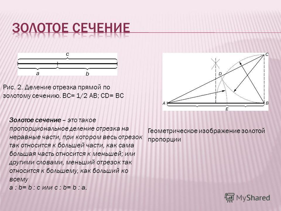 Геометрическое изображение золотой пропорции Рис. 2. Деление отрезка прямой по золотому сечению. BC= 1/2 AB; CD= BC Золотое сечение – это такое пропорциональное деление отрезка на неравные части, при котором весь отрезок так относится к большей части