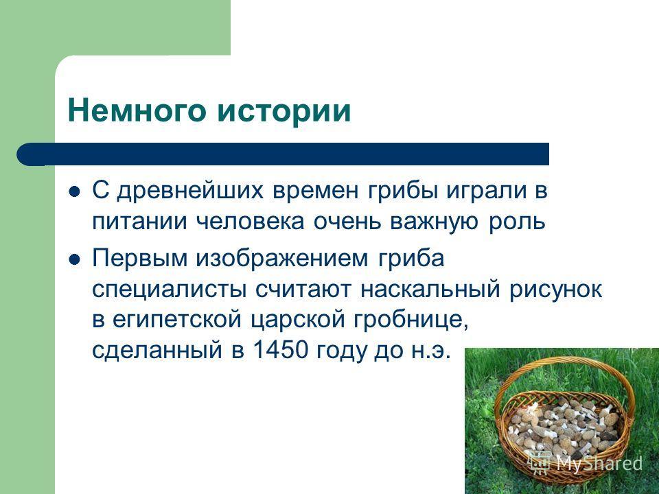 Немного истории С древнейших времен грибы играли в питании человека очень важную роль Первым изображением гриба специалисты считают наскальный рисунок в египетской царской гробнице, сделанный в 1450 году до н.э.