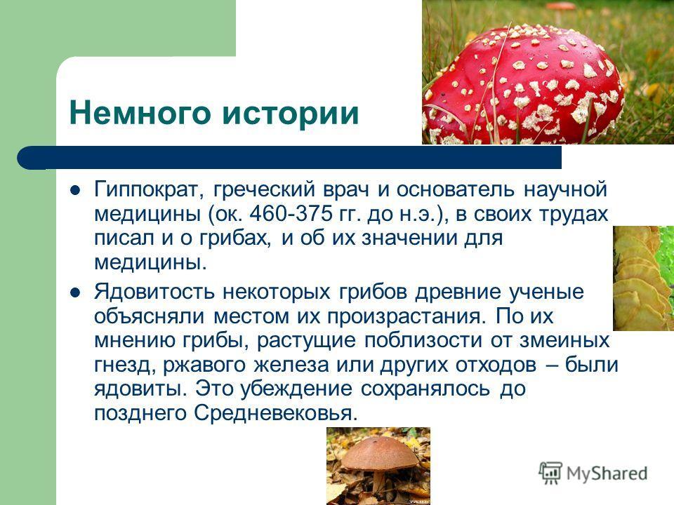 Немного истории Гиппократ, греческий врач и основатель научной медицины (ок. 460-375 гг. до н.э.), в своих трудах писал и о грибах, и об их значении для медицины. Ядовитость некоторых грибов древние ученые объясняли местом их произрастания. По их мне