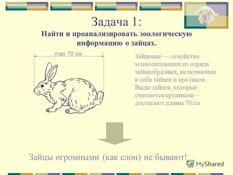Задача 1: Найти и проанализировать зоологическую информацию о зайцах. Зайцы огромными (как слон) не бывают! За́йцевые семейство млекопитающих из отряда зайцеобразных, включающее в себя зайцев и кроликов. Виды зайцев, которые считаются крупными – дост