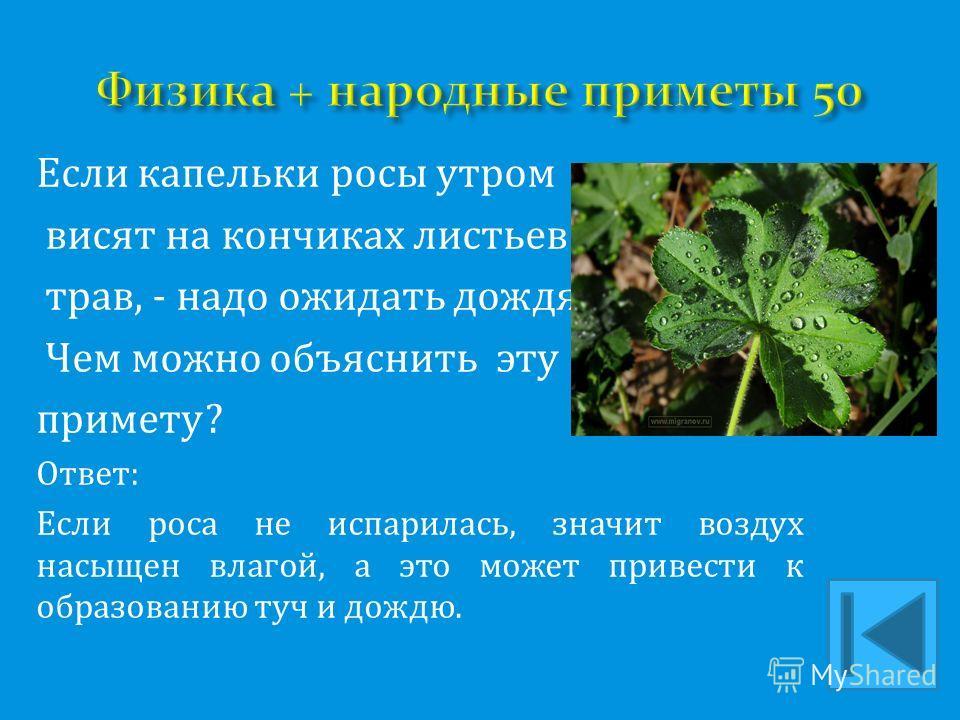 Если капельки росы утром висят на кончиках листьев и трав, - надо ожидать дождя. Чем можно объяснить эту примету? Ответ: Если роса не испарилась, значит воздух насыщен влагой, а это может привести к образованию туч и дождю.
