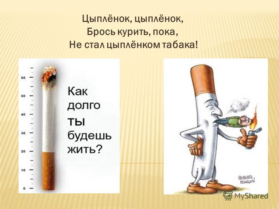 Цыплёнок, цыплёнок, Брось курить, пока, Не стал цыплёнком табака!