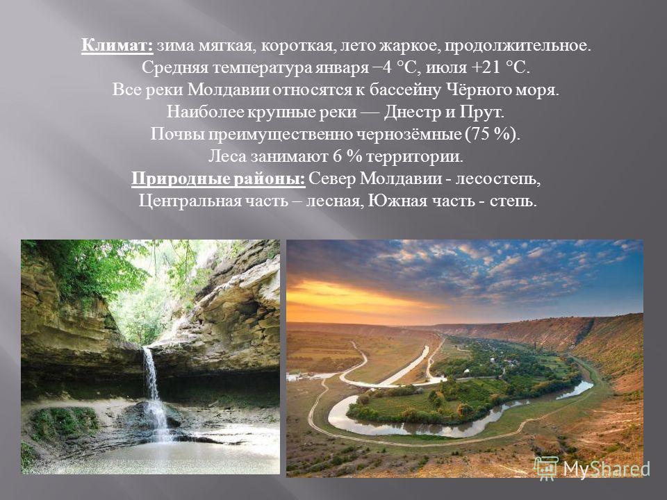 Климат : зима мягкая, короткая, лето жаркое, продолжительное. Средняя температура января 4 °C, июля +21 °C. Все реки Молдавии относятся к бассейну Чёрного моря. Наиболее крупные реки Днестр и Прут. Почвы преимущественно чернозёмные (75 %). Леса заним