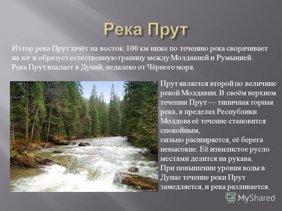 Из гор река Прут течёт на восток. 100 км ниже по течению река сворачивает на юг и образует естественную границу между Молдавией и Румынией. Река Прут впадает в Дунай, недалеко от Чёрного моря. Прут является второй по величине рекой Молдавии. В своём