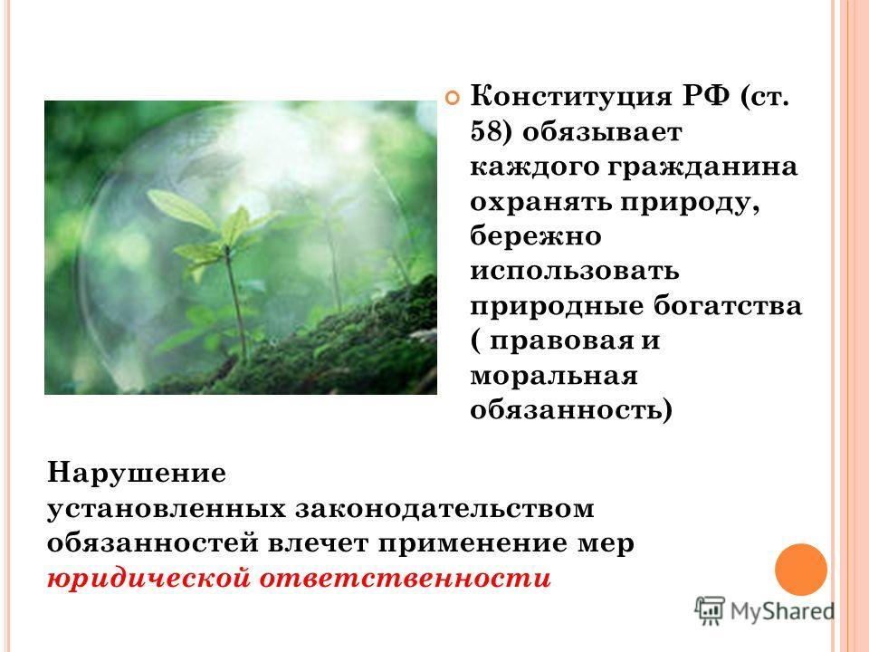 Конституция РФ (ст. 58) обязывает каждого гражданина охранять природу, бережно использовать природные богатства ( правовая и моральная обязанность) Нарушение установленных законодательством обязанностей влечет применение мер юридической ответственнос