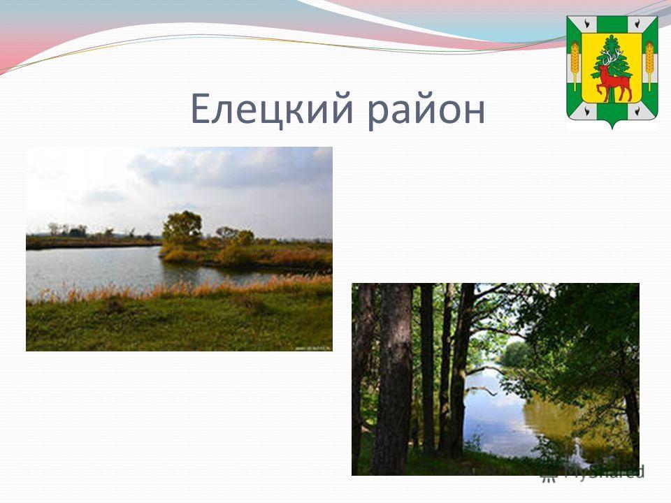 Елецкий район
