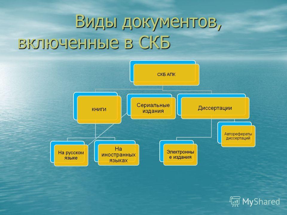 Виды документов, включенные в СКБ