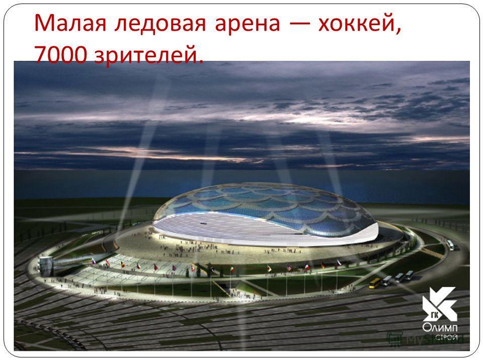 Малая ледовая арена хоккей, 7000 зрителей.