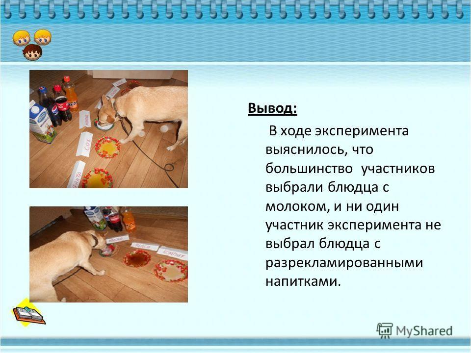 Вывод: В ходе эксперимента выяснилось, что большинство участников выбрали блюдца с молоком, и ни один участник эксперимента не выбрал блюдца с разрекламированными напитками.