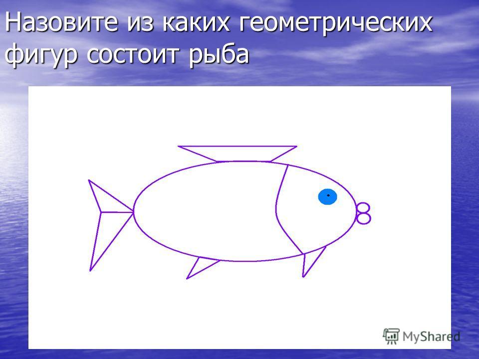 Назовите из каких геометрических фигур состоит рыба
