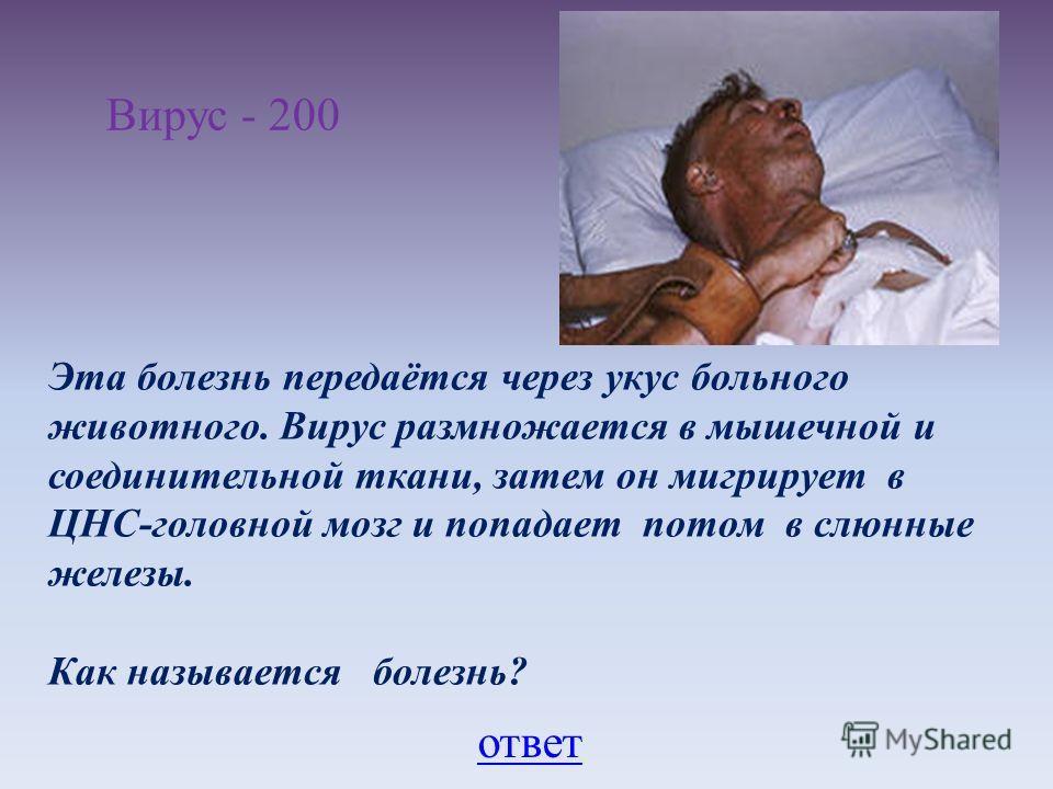 Вирус - 200 Эта болезнь передаётся через укус больного животного. Вирус размножается в мышечной и соединительной ткани, затем он мигрирует в ЦНС-головной мозг и попадает потом в слюнные железы. Как называется болезнь? ответ