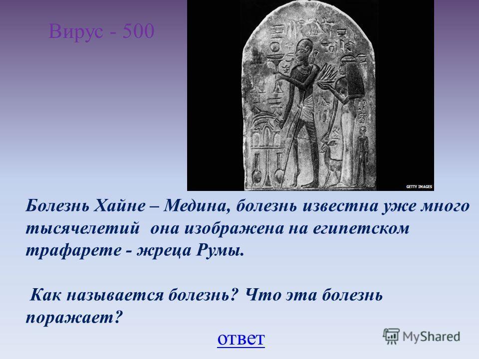 Вирус - 500 Болезнь Хайне – Медина, болезнь известна уже много тысячелетий она изображена на египетском трафарете - жреца Румы. Как называется болезнь? Что эта болезнь поражает? ответ