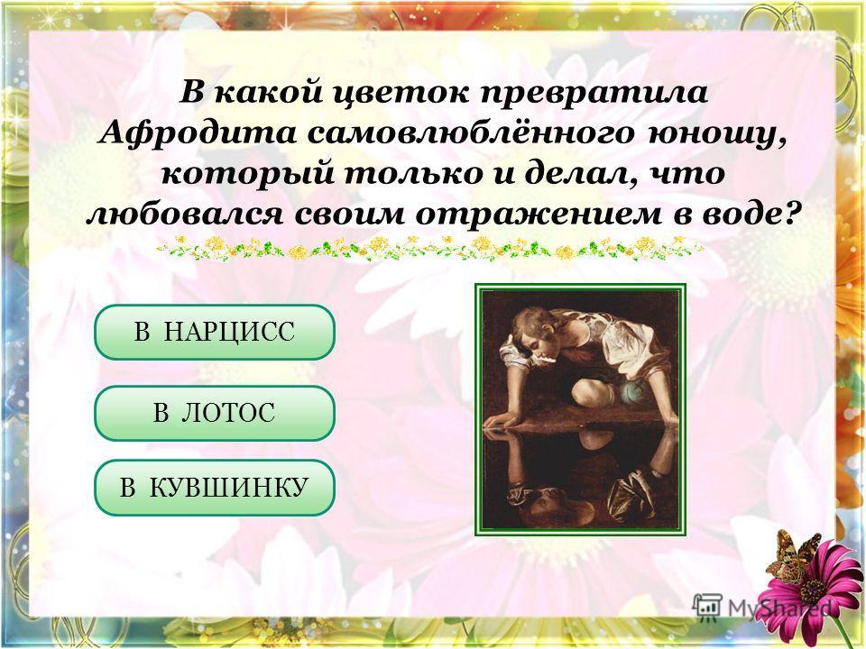 В какой цветок превратила Афродита самовлюблённого юношу, который только и делал, что любовался своим отражением в воде? В ЛОТОС В КУВШИНКУ В НАРЦИСС
