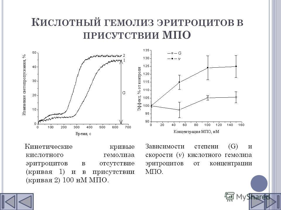 К ИСЛОТНЫЙ ГЕМОЛИЗ ЭРИТРОЦИТОВ В ПРИСУТСТВИИ МПО Кинетические кривые кислотного гемолиза эритроцитов в отсутствие (кривая 1) и в присутствии (кривая 2) 100 нМ МПО. Зависимости степени (G) и скорости (v) кислотного гемолиза эритроцитов от концентрации
