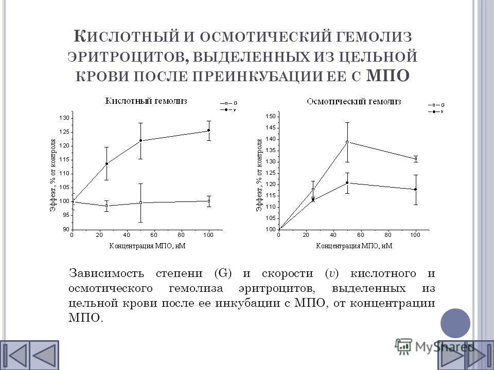 К ИСЛОТНЫЙ И ОСМОТИЧЕСКИЙ ГЕМОЛИЗ ЭРИТРОЦИТОВ, ВЫДЕЛЕННЫХ ИЗ ЦЕЛЬНОЙ КРОВИ ПОСЛЕ ПРЕИНКУБАЦИИ ЕЕ С МПО Зависимость степени (G) и скорости ( v ) кислотного и осмотического гемолиза эритроцитов, выделенных из цельной крови после ее инкубации с МПО, от