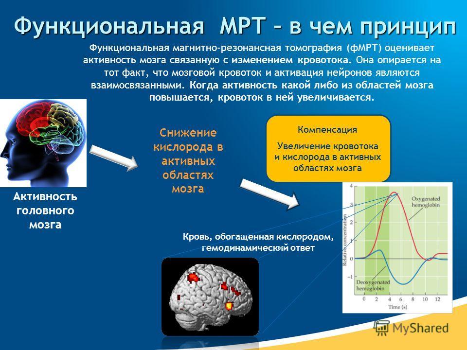 Функциональная МРТ – в чем принцип Активность головного мозга Снижение кислорода в активных областях мозга Кровь, обогащенная кислородом, гемодинамический ответ Компенсация Увеличение кровотока и кислорода в активных областях мозга Функциональная маг