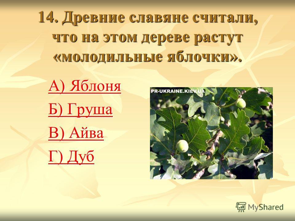13. Судя по названию, это растение ядовито для животных. А люди лечат им самые разные недуги А) Мухомор А) Мухомор Б) Зверобой Б) Зверобой В) Душица В) Душица Г) Чертополох Г) Чертополох