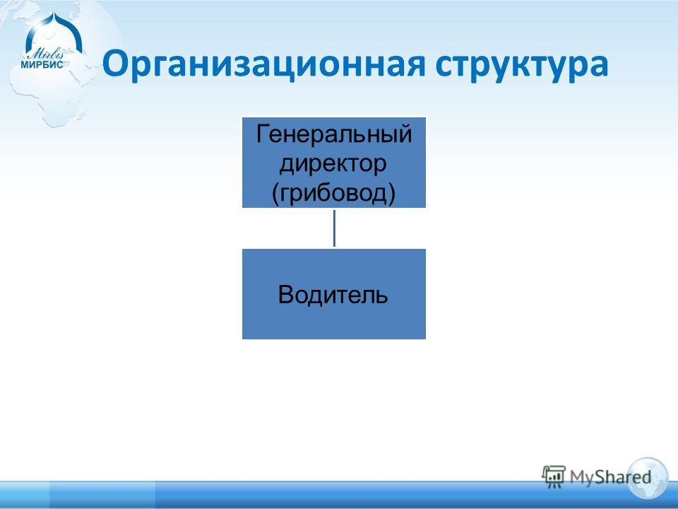 Организационная структура Генеральный директор (грибовод) Водитель