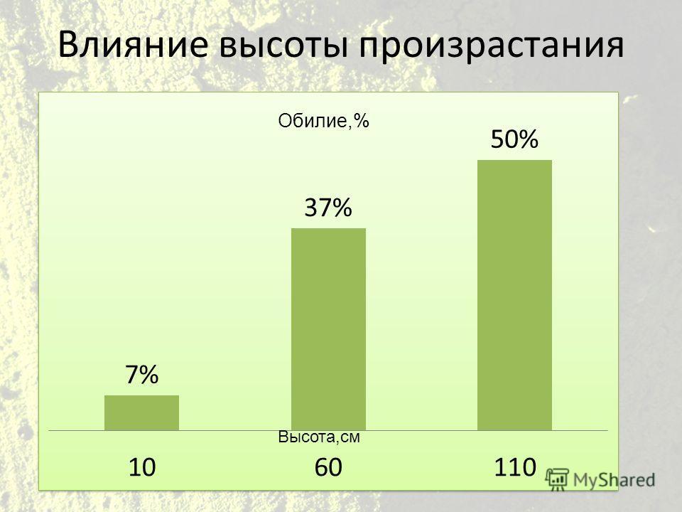 Влияние высоты произрастания Высота,см Обилие,%