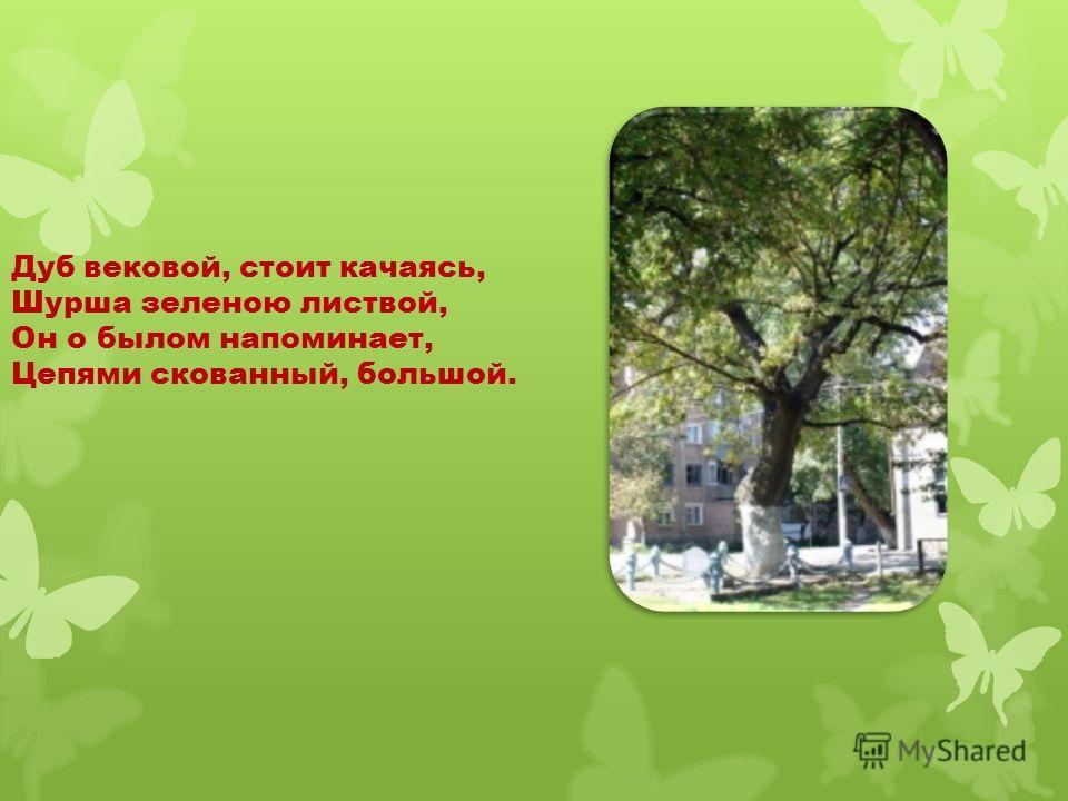 Дуб вековой, стоит качаясь, Шурша зеленою листвой, Он о былом напоминает, Цепями скованный, большой.