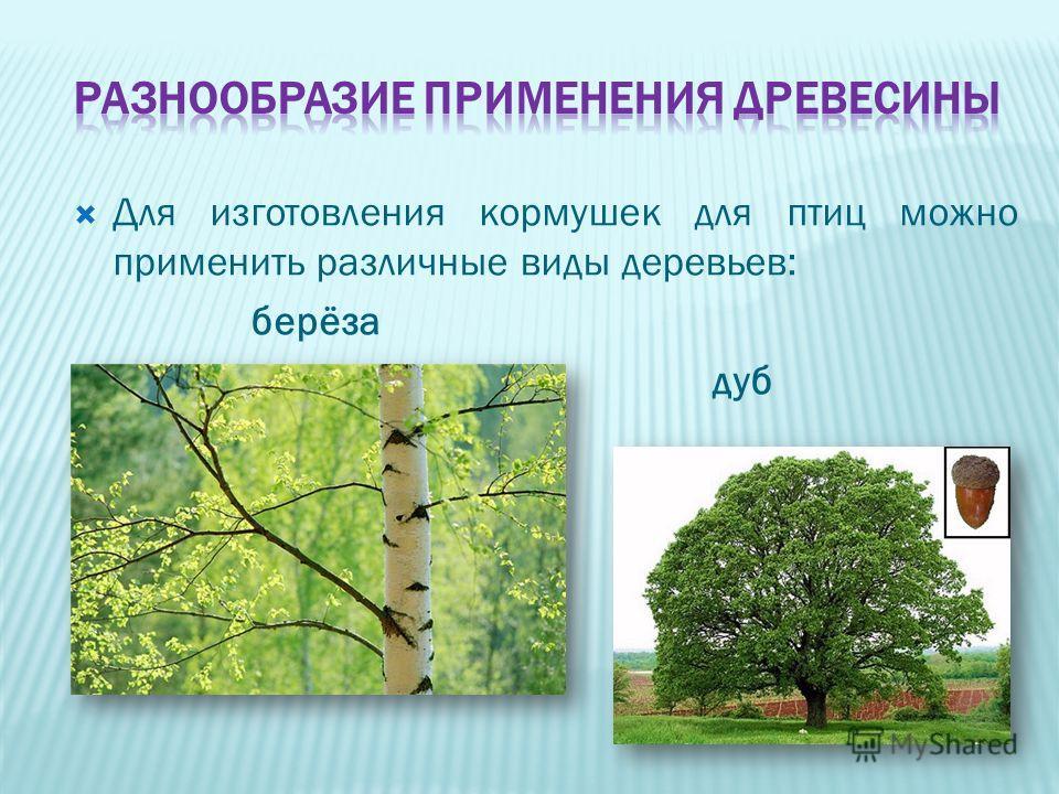 Для изготовления кормушек для птиц можно применить различные виды деревьев: берёза дуб