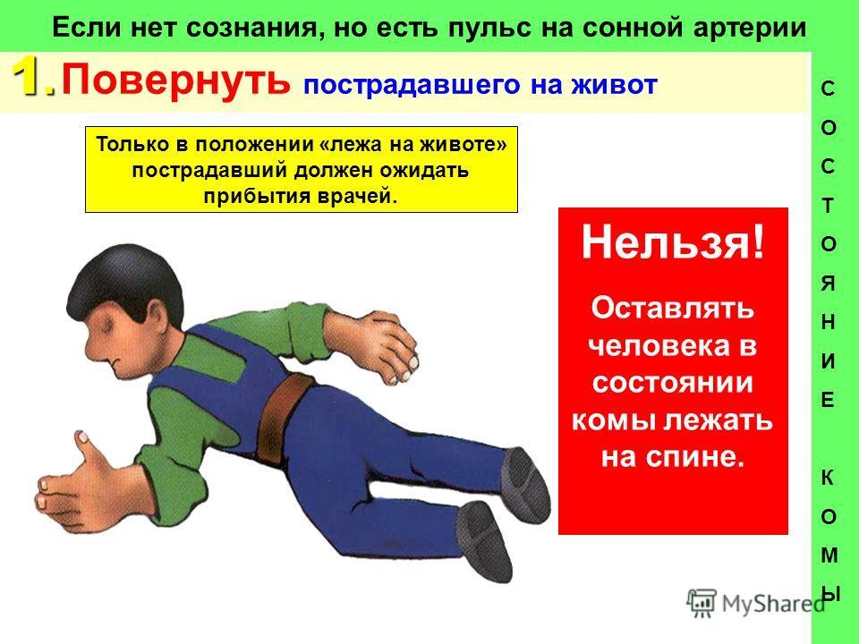 квартиру-студию Московской что нельзя делать при коме билеты поезд Кандалакша