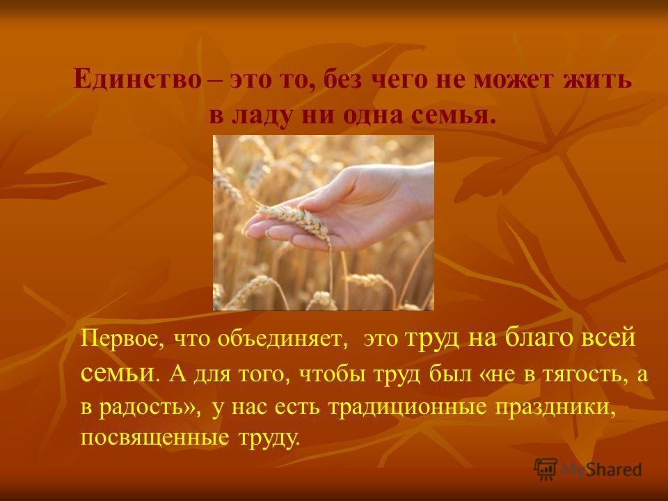Единство – это то, без чего не может жить в ладу ни одна семья. Первое, что объединяет, это труд на благо всей семьи. А для того, чтобы труд был «не в тягость, а в радость», у нас есть традиционные праздники, посвященные труду.