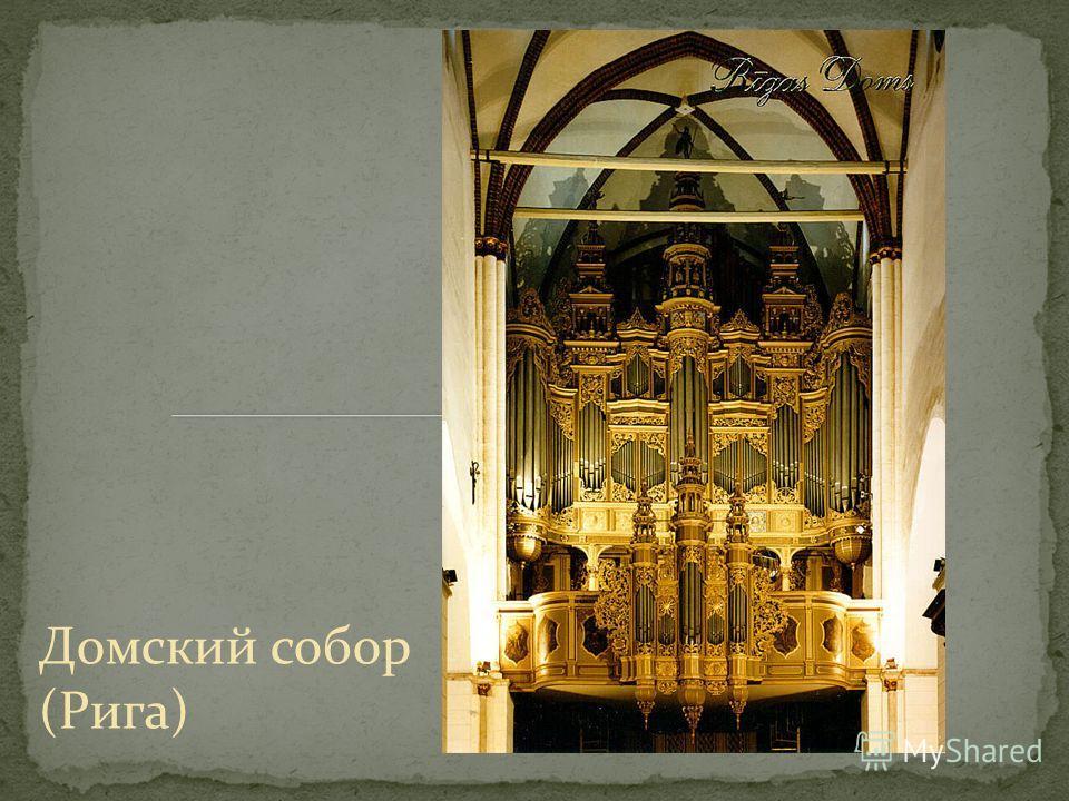 Домский собор (Рига)
