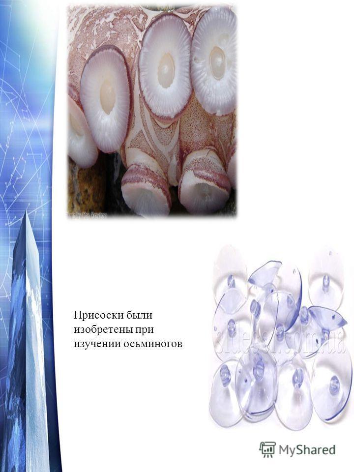 Присоски были изобретены при изучении осьминогов