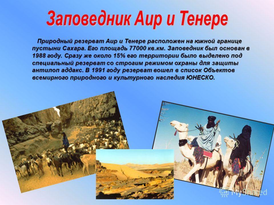 Природный резерват Аир и Тенере расположен на южной границе пустыни Сахара. Его площадь 77000 кв.км. Заповедник был основан в 1988 году. Сразу же около 15% его территории было выделено под специальный резерват со строгим режимом охраны для защиты ант