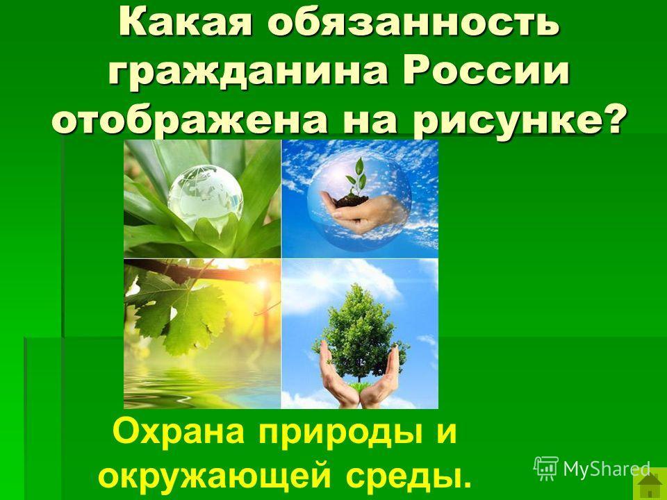 Какая обязанность гражданина России отображена на рисунке? Охрана природы и окружающей среды.